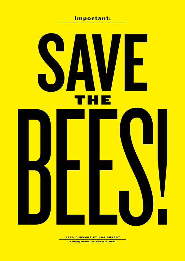 'Save The Bees' by Barnes & Webb and The Loop Magazine
